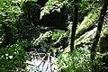 Cascade Ruisseau Balme Corveissiat 2.jpg