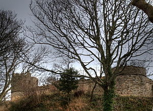 Castell Aberlleiniog - Two of the castle's towers and keep wall in 2009, after restoration had begun