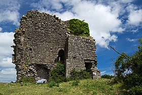 Castles of Munster- Castle Leiny, Tipperary (2) (geograph 4569503).jpg