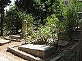 Cemetery of Kibutz Yagur IMG 2933.JPG