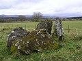 Chambered grave site at Ballyrenan (2) - geograph.org.uk - 1176713.jpg