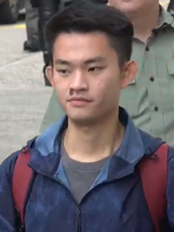 https://upload.wikimedia.org/wikipedia/commons/thumb/3/3e/Chan_Tong-kai.png/250px-Chan_Tong-kai.png