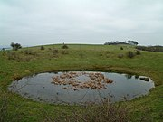 Chanctonbury Dew Pond