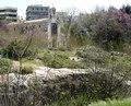Chapel of Saint Photeini + River Ilissos.tif