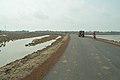 Chaulkhola-Mandarmani Road - Dadanpatrabarh - East Midnapore 2015-05-02 8988.JPG