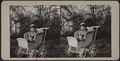 Child sitting in a carriage, from Robert N. Dennis collection of stereoscopic views.png
