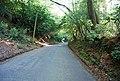 Climbing Bentham Hill - geograph.org.uk - 1276694.jpg