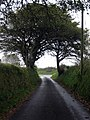 Climbing towards the junction - geograph.org.uk - 577626.jpg