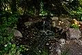 Cochrane Memorial Park, Yelm, Washington - By the waterfall.jpg
