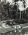 Collectie Nationaal Museum van Wereldculturen TM-60061954 Vrouwen doen de was in de rivier Jamaica fotograaf niet bekend.jpg