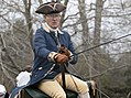 Colonial Williamsburg Virginia - carriage horses (31649735103).jpg