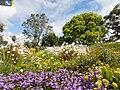 Color of spring - panoramio.jpg