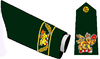 Commander-in-Chief Canada army insignia.png