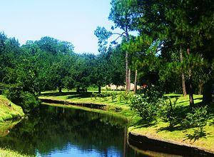 McNeese State University - Contraband Bayou runs through the southern portion of the McNeese campus.