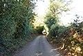 Cooper's Lane - geograph.org.uk - 1549226.jpg