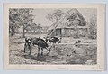 Cows Drinking MET DP874113.jpg