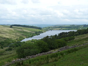 Cray Reservoir - Looking north-east from a lay-by on the A4067