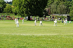 Cricket-Verulamium-Park-20050508-001
