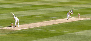Bowler Shaun Pollock bowls to batsman Michael Hussey. The paler strip is the cricket pitch. The two sets of three wooden stumps on the pitch are the wickets. The two white lines are the creases.