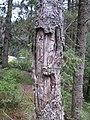 Cross on the tree - panoramio.jpg