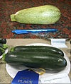 Cucurbita pepo 'Grey Zucchini' (top) and 'Black Zucchini' (bottom).jpg