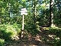 Czech Republic-Poland border, Opawskie Mountains 2020.09.09 18.jpg