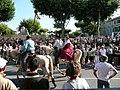 Démonstration d'équitation camarguaise.jpg