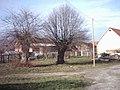 Döbritschen 2003-12-01 02.jpg