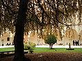 DSC01487 - Umanitaria, Milano - Chiostro grande.jpg