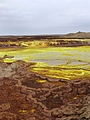 Dallol-Ethiopie (9).jpg