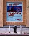Dandelion Mind (6217557647).jpg
