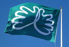 Danderyds sygehuse, flag