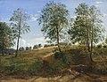 Dankvart Dreyer - The Caroline Spring at Næsby on Funen - KMS501 - Statens Museum for Kunst.jpg