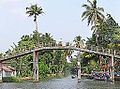 Dans les Backwaters (Kerala, Inde) (13719837884).jpg