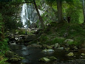 River Dargle - The Waterfall