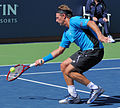 David Nalbandian at the 2010 US Open 02.jpg