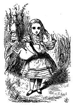 De Alice's Abenteuer im Wunderland Carroll pic 22