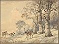 Deer under Beech Trees in Summer MET DP827271.jpg