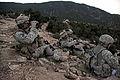 Defense.gov photo essay 100925-A-3603J-080.jpg