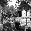 Del hiše poleg zadruge na Šentviški Gori 1954.jpg