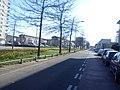 Delft - 2013 - panoramio (1178).jpg