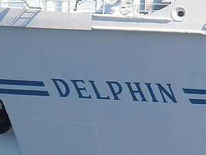 Delphin Name 8 May 2012 Tallinn.JPG