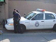 Bear cop flase alarm