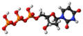 Deoxyuridine triphosphate 3D ball.png