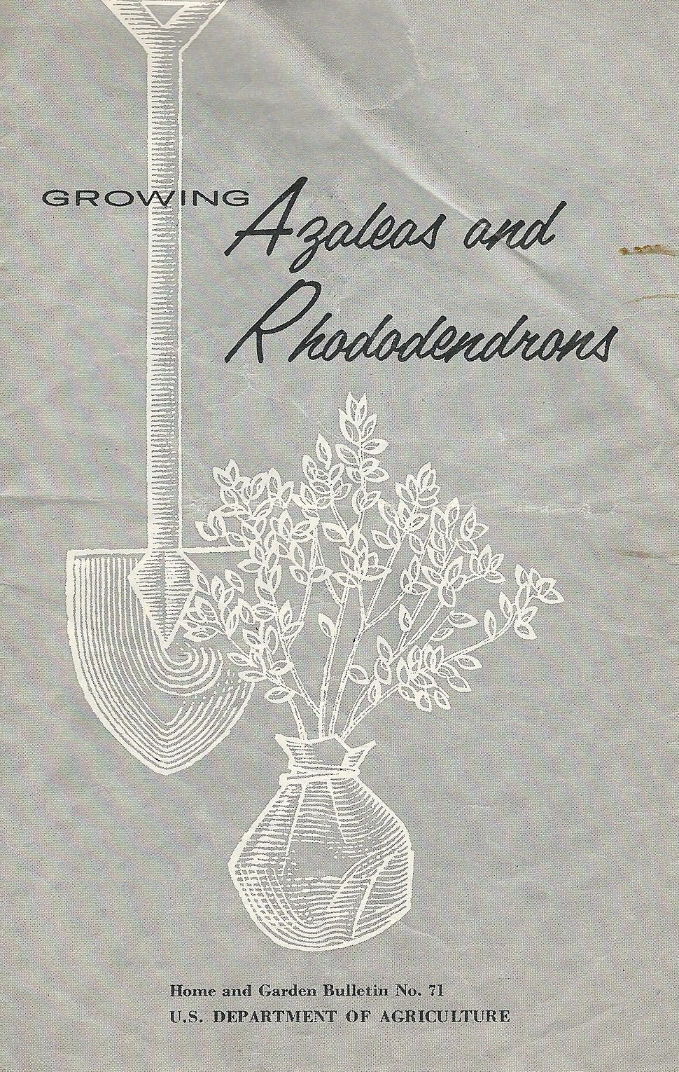 Dept Agriculture azaleas and rhododendrons publication