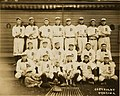 Detroit Tigers, Champions of the American League in 1907.jpg