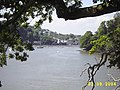 Dittisham from Greenway Boat House - geograph.org.uk - 39777.jpg