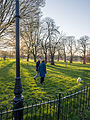 Dog walkers in Ruskin Park (13041463554).jpg