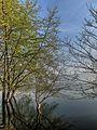 Dojran Lake 133.jpg