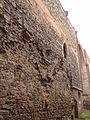 Dolní Kounice - pohled na boční stěnu hlavní lodě zříceniny kláštera Rosa coeli.jpg